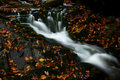 Free Autumn Stream In Giant Mountains Stock Photos - 1025263