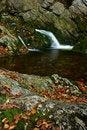 Free Autumn Stream In Giant Mountains Stock Image - 1025361