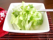 Salad Of Lettuce Royalty Free Stock Photos