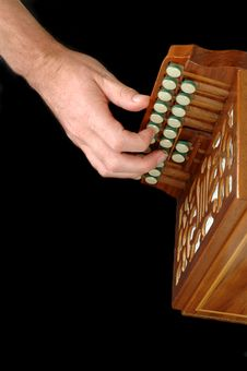 Free Playing Accordion Stock Photography - 1021742