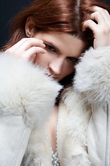 Free Elegant Woman In Winter Royalty Free Stock Images - 1022209