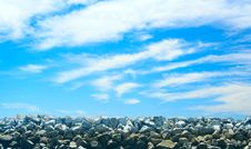 Free Rocky Wall At Low Tide. Royalty Free Stock Photo - 1022895
