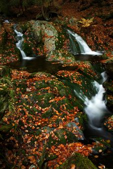 Free Autumn Stream In Giant Mountains Royalty Free Stock Photo - 1025045