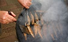 Free BBQ - Fish Stock Images - 1025234