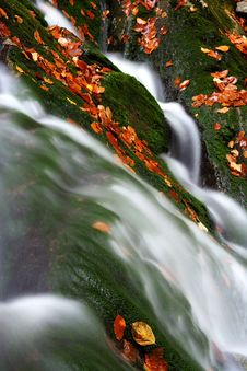 Free Autumn Stream In Giant Mountains Royalty Free Stock Photos - 1025298