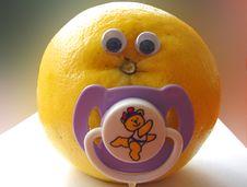 Free Baby Grapefruit Royalty Free Stock Images - 1026039