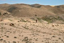 Free Matmata (South Tunisia) Stock Photography - 1026252