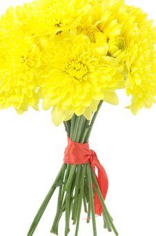 Free Yellow Dahlias Royalty Free Stock Images - 1027519