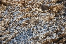 Free Polluted Snow Stock Image - 1027831
