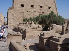 Free Karnak Temple Royalty Free Stock Photography - 1028647