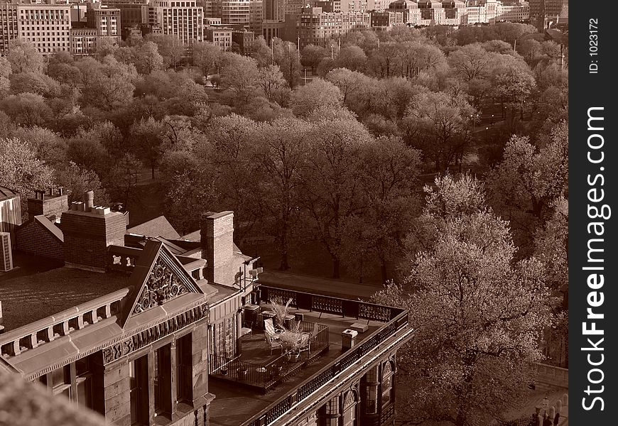 View Of Roof Top and Boston Commons