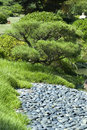 Free Garden And Rock Bed Royalty Free Stock Photography - 10208017