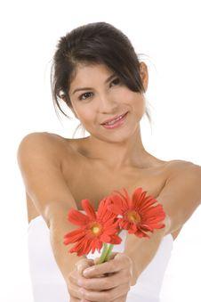 Free Flowers Stock Image - 10200811