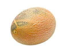 Free Melon Stock Image - 10200821