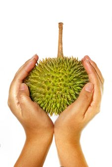 Free Durian Asian Fruits Series 03 Royalty Free Stock Image - 10201586