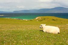Iona, Scottish Island Stock Photo