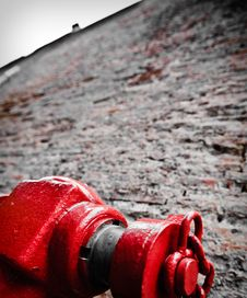 Free Red Hydrant Royalty Free Stock Photos - 10202198