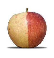 Free Two Coloured Apple Stock Photo - 10202830