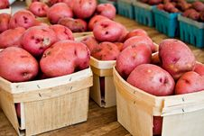 Free Spuds Sale Stock Photography - 10204472