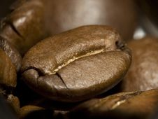 Free Coffee Beans Royalty Free Stock Photography - 10205527