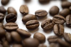 Free Coffee Beans Stock Images - 10205534