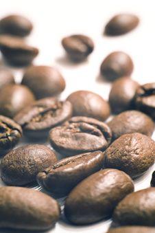 Free Coffee Beans Stock Photo - 10205550