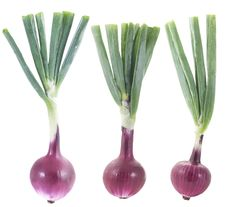 Free Red Onions Royalty Free Stock Photography - 10207447