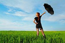 Free Umbrella Royalty Free Stock Images - 10208259