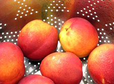 Free Nectarines Royalty Free Stock Photography - 10209397