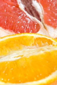 Free Grapefruit And Orange Royalty Free Stock Photography - 10209467