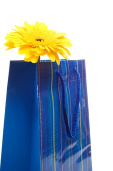 Free Paper Bag For Gifts Stock Image - 10209701