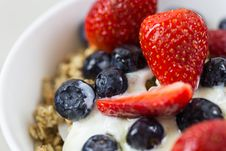 Free Berries, Berry, Blueberries Stock Image - 102093821