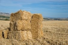 Summer Rural Landscape Stock Photography