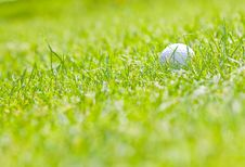 Free Golf Ball Stock Image - 10213001