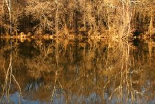 Free Reflections Royalty Free Stock Images - 10213049