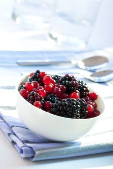 Free Redcurrants And Blackberries Royalty Free Stock Photo - 10215075