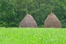 Free Two Haystacks On Field Stock Photos - 10216133