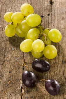 Free Grapes Royalty Free Stock Image - 10216206