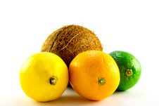 Free Lemon, Lime, Orange And Coconut Royalty Free Stock Photo - 10216225