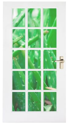White Door With Aloe Grass Behind Stock Photography