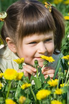 Little Cute Girl Is Sniffing At The Dandelion Stock Image