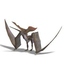 Free Dinosaur Pteranodon Stock Photos - 10223443