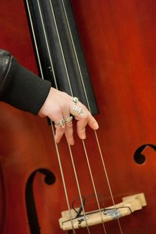Musical String Instrument Royalty Free Stock Photos
