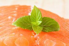Free Salmon Stock Image - 10224411