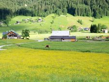 Spring Of Gosau Village Royalty Free Stock Photos