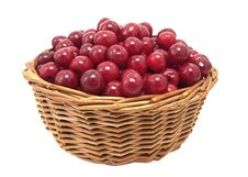 Free Cherries Stock Photos - 10225723