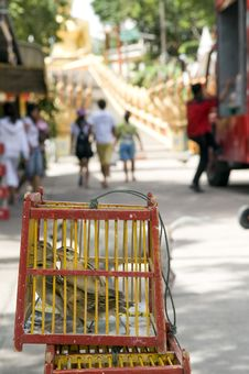 Free Cages In The Thai Monastery. Stock Photography - 10226792