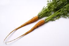 Free Two Freshly Picked Young Carrots Royalty Free Stock Images - 10227399