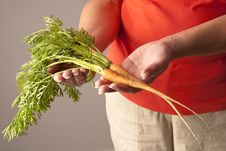 Free Two Freshly Picked Young Carrots Royalty Free Stock Photography - 10227627