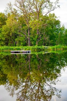 Free Reflection In The Pond Stock Image - 10228271